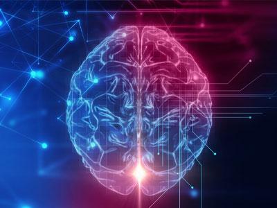 Il Funzionamento della mente e la sua architettura
